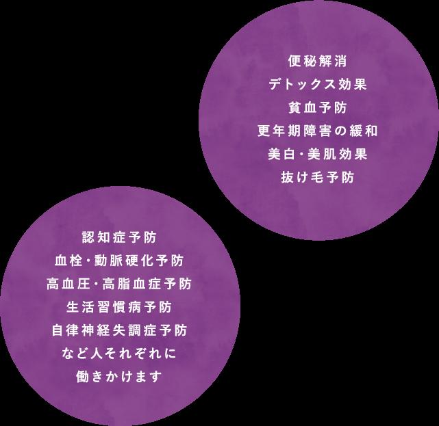 粉末イメージ01