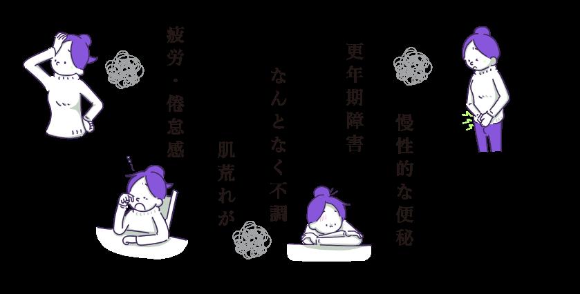 菊のマークの商品はこのような方々に選ばれています
